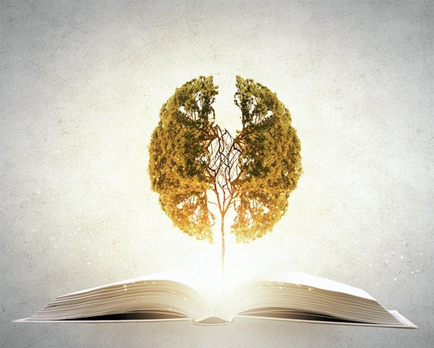 Книги для развития интеллекта