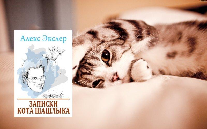 Книга о коте шашлыке