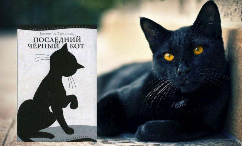 Евгениос тривизас последний чёрный кот когда люди узнают правду о черных кошках, они