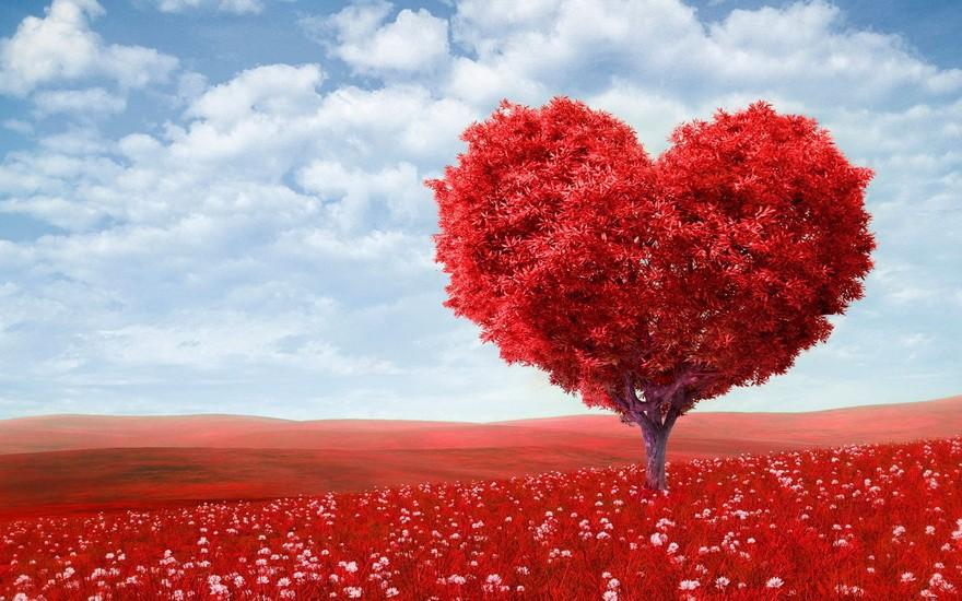 Дерево в форме красного сердца