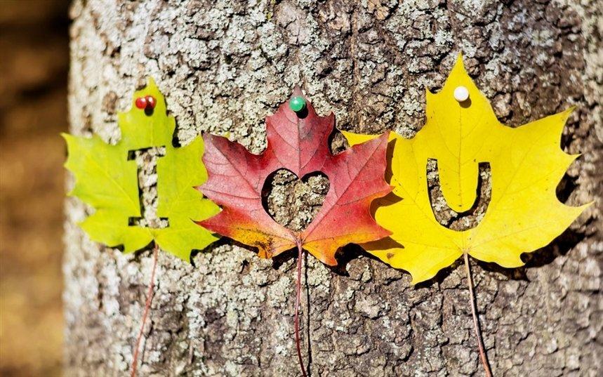 Идеи для свидания осенью
