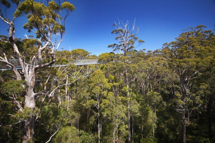 Долина гигантов, Западная Австралия