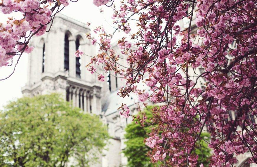 европа_весной