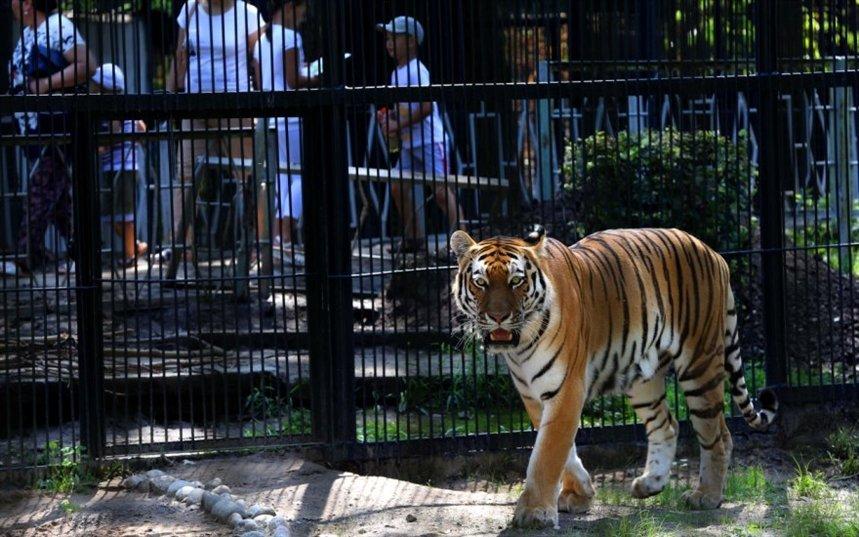 Зоопарк Алма-Аты