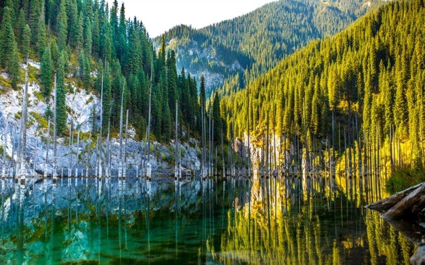 Затонувший лес Каинды