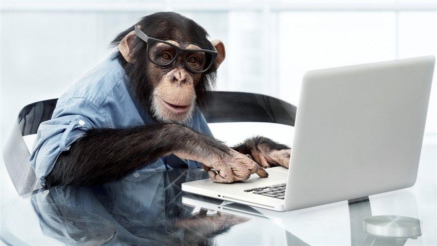 Маск сделал из обезьяны геймера