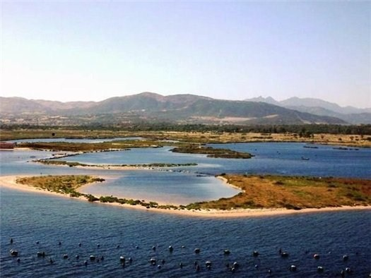 Остров Скорпионов
