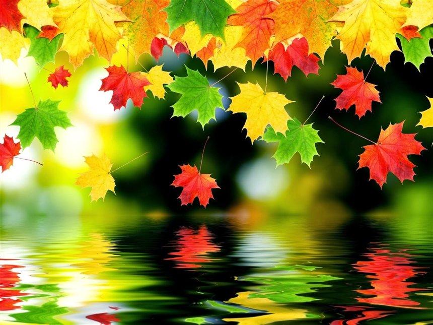 За что мы благодарны осени